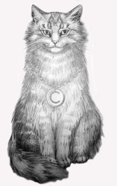 Кот копирайтера Kashchey